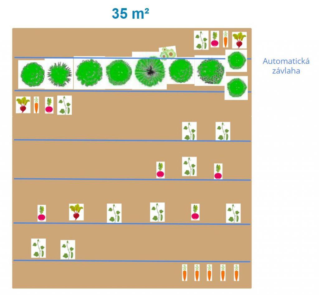 Záhon 35 metrů čtverečních